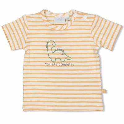 T-shirt streep - Dinomite - Feetje